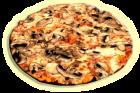 пица-фунги